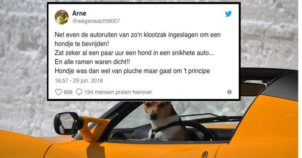 Nogmaals, haal die hond uit de auto